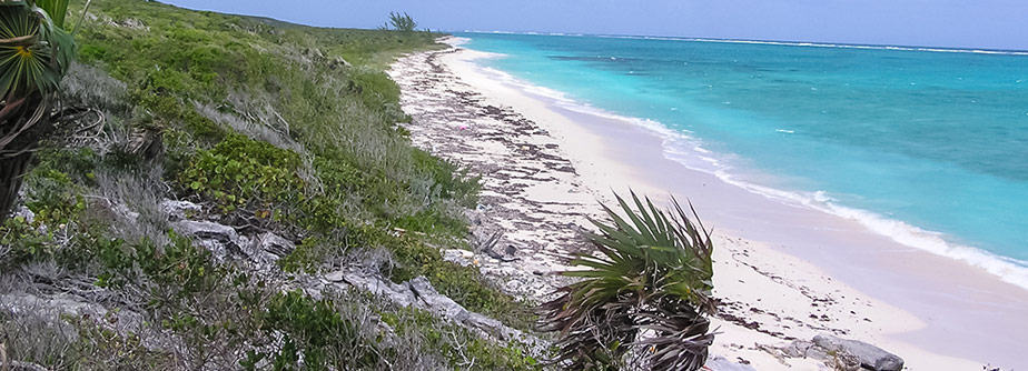 Flights & Hotel Reservations For Crooked Island, Bahamas